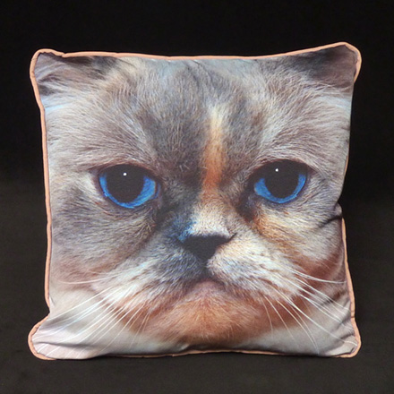 Cat Face Photo Pillow (Upholstery front,  back and cording)