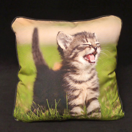 Crying Kitten Photo Pillow (Upholstery front, Micro-suede back and cording)