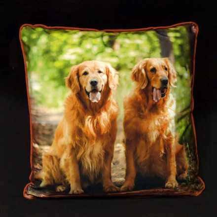 Two Dogs Photo Pillow (Micro-suede front,  back and cording)